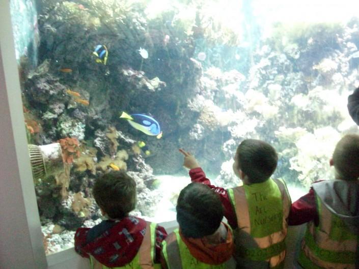 Hornimans Aquarium